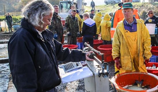 Fischzüchter Paul Menzel (li.) wurde von einer Spaziergängerin verklagt, die sich auf seinem Privatgrund verletzte.